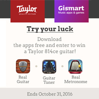 Gismart Partners with Taylor Guitars